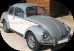 escarabajo 1302 - 1